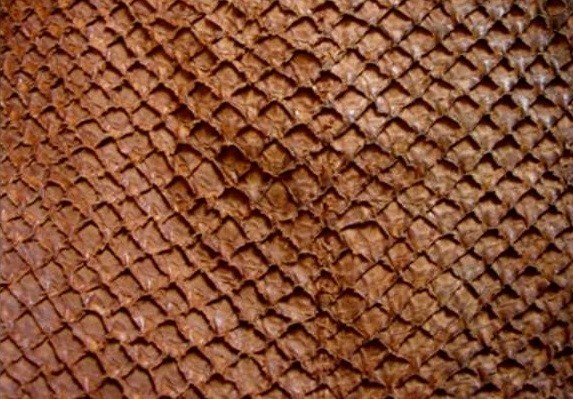 Fish leather